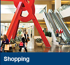 link-dallasshopping